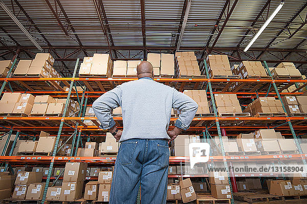 Male warehouse worker looking at cardboard boxes on shelves