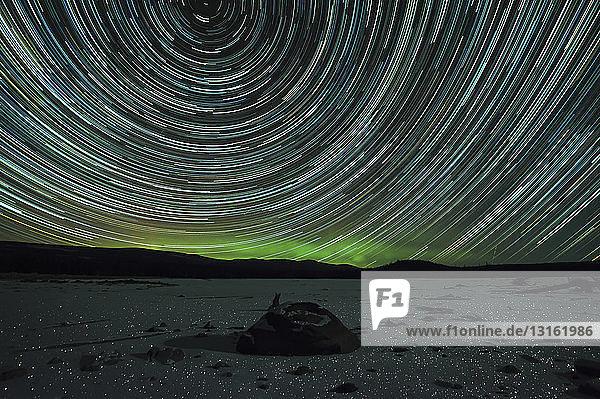 Sternenspuren  Polaris  Erdrotation  Rauhreif bei Nacht  Naramata  Britisch-Kolumbien  Kanada