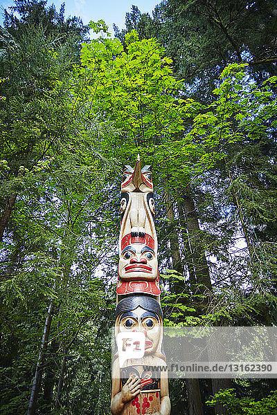 Totempfahl  Vancouver  Britisch-Kolumbien  Kanada