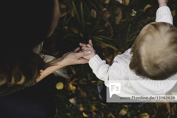 Cropped overhead view of mother and baby boy standing on autumn leaves holding hands