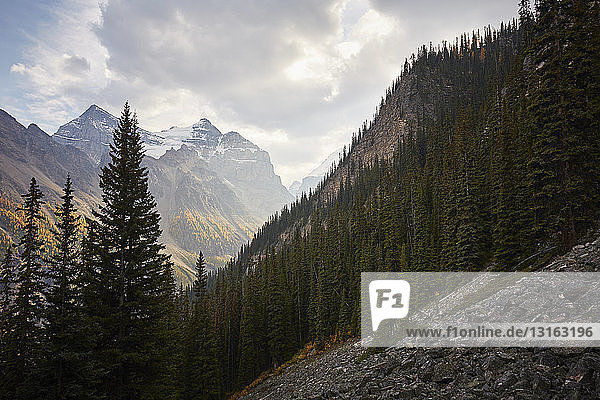 Rocky mountains seen from Banff National Park  Alberta  Canada