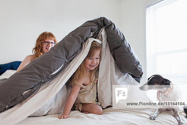Girl hiding under duvet  mother and dog on bed