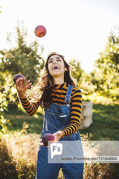 Young woman  in rural environment  juggling with apples