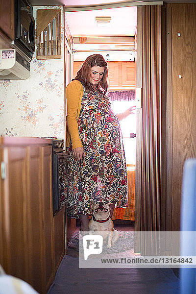 Pregnant mid adult woman standing in doorway looking down at French bulldog