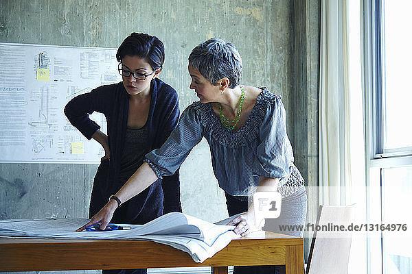 Zwei Geschäftsfrauen studieren Blaupausen im Amt