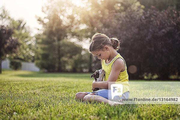 Mädchen sitzt auf Gras und hält Boston-Terrier-Welpen