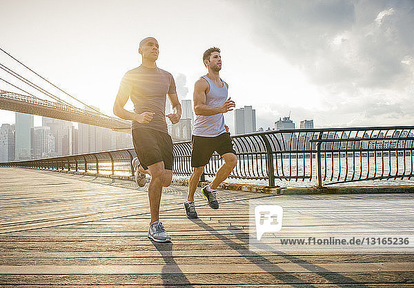 Zwei männliche Lauffreunde laufen vor der Brooklyn Bridge  New York  USA