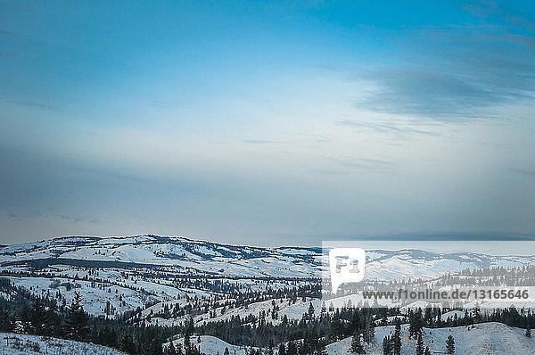 Hochwinkelansicht einer schneebedeckten Bergkette und immergrüner Bäume  Merrit  Britisch-Kolumbien  Kanada