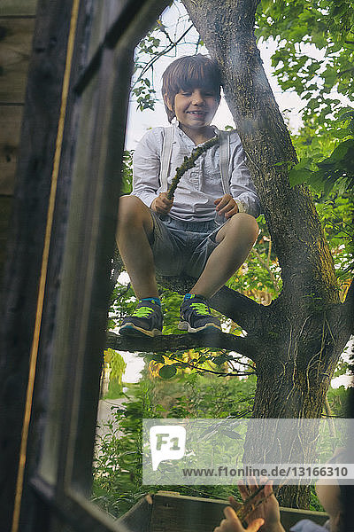 Two boys playing in tree outside hut window