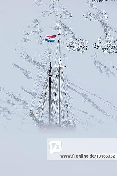 Die Noorderlicht  ein holländischer Schoner. Jedes Jahr wird die Nooderlicht in Spitzbergen im Eis eingefroren und dient als ausgezeichnetes Basislager in der Wildnis  perfekt zum Aufspüren von Eisbären.