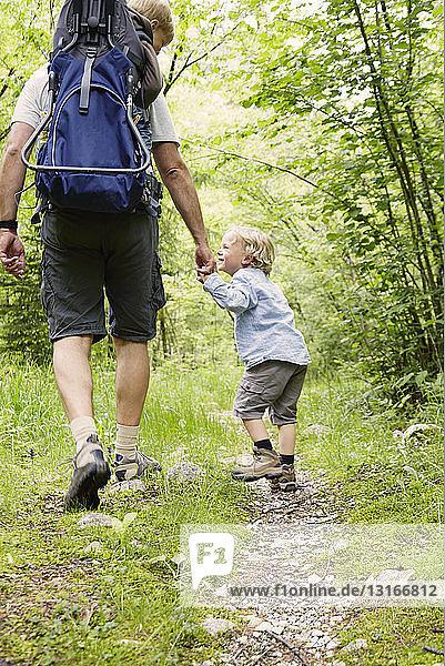 Ausgewachsener männlicher Wanderer wandert mit zwei Söhnen im Wald  Bovec  Soca  Slowenien