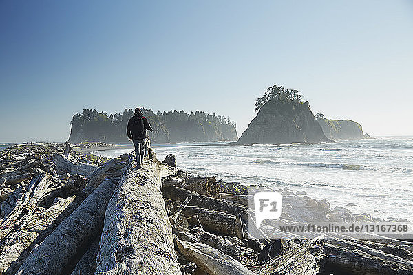 Rear view of man walking on fallen tree carrying tripod  Rialto Beach  Washington State  USA