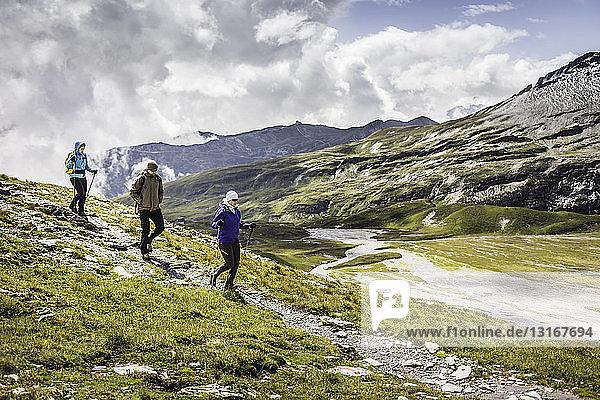Männliche und weibliche Wanderer beim Abstieg  Fil de Cassons  Segnesboden  Graubünden  Schweiz