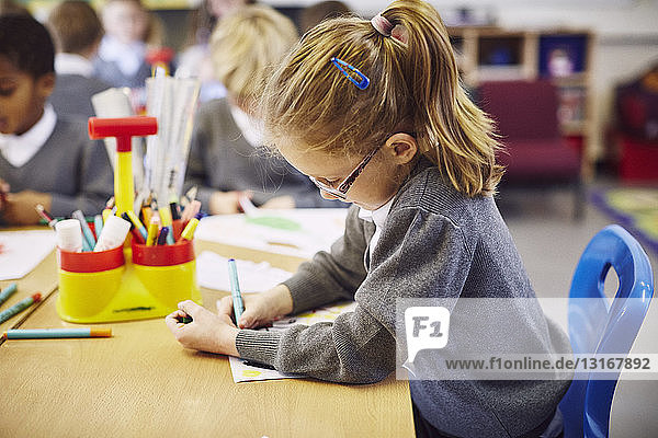 Girl concentrating on drawing in elementary school classroom