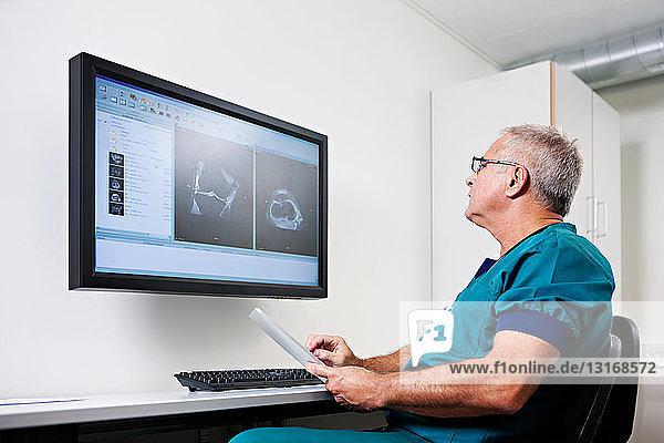 Arzt betrachtet Scans auf dem Monitor
