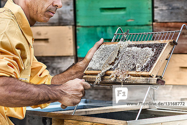 Honeykeeper Entdeckelungsrahmen für Bienenstöcke