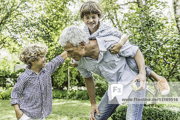 Mature man with two grandsons in garden
