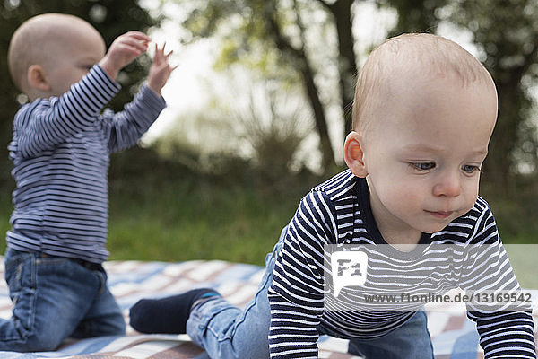 Baby twin brothers playing on picnic blanket in field