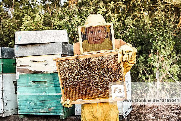 Porträt eines Jungen in Imkerkleidung  der einen Bienenstock voll Bienen hält