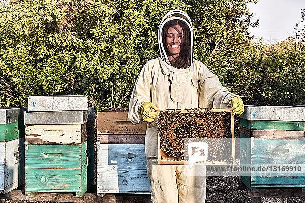 Porträt einer Frau in Imkerkleidung  die einen mit Bienen bestückten Bienenstock hält