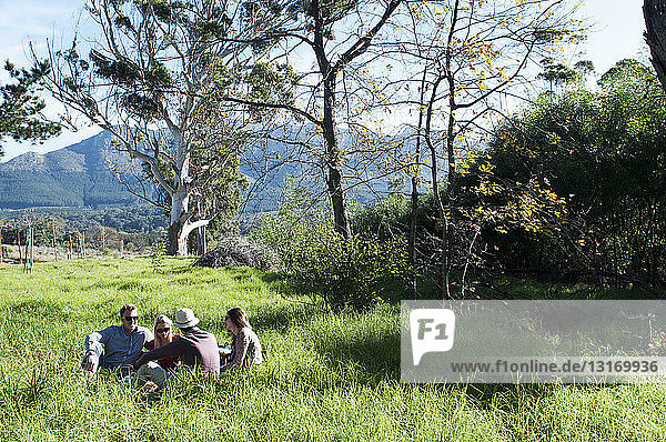 Group of friends having picnic in long grass