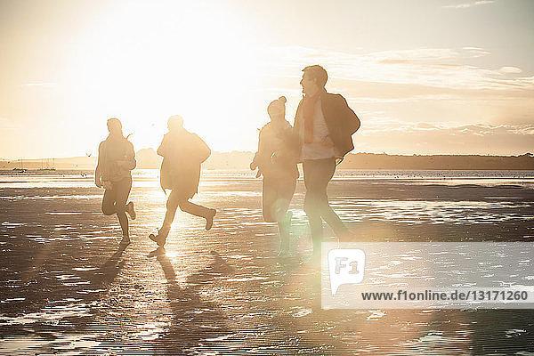 Erwachsene Freunde  die am Strand gegeneinander antreten
