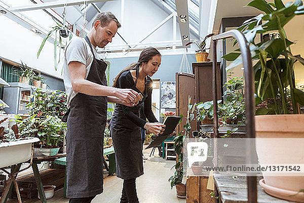Männliche und weibliche Besitzer mit digitalem Tablet diskutieren über Pflanzen im Geschäft