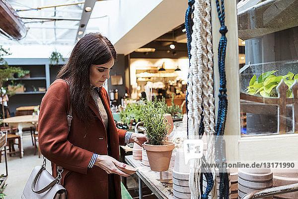 Weiblicher Kunde betrachtet Topfpflanze im Geschäft