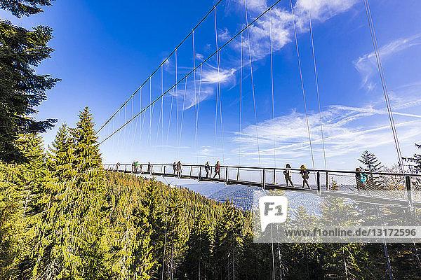 Germany  Baden-Wuerttemberg  Black Forest  Bad Wildbad  Sommerberg  suspension bridge WildLine