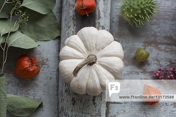 Herbstliche Dekoration mit weißem Zierkürbis  chinesischen Laternen und Blättern