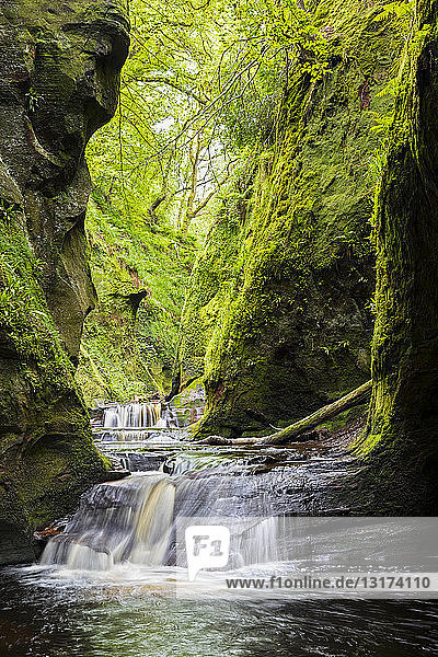 Großbritannien  Schottland  Trossachs-Nationalpark  Finnich-Glen-Canyon  The Devil's Pulpit  River Carnock Burn