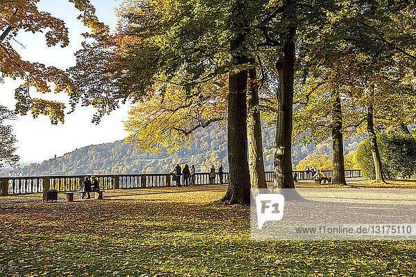 Deutschland  Baden-Württemberg  Heidelberg  Schlossgarten im Herbst