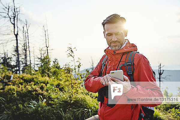 Smiling man checking his cell phone during hiking trip