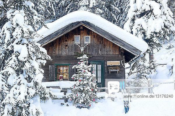 Österreich  Altenmarkt-Zauchensee  Weihnachtsbaum am Holzhaus im Schnee