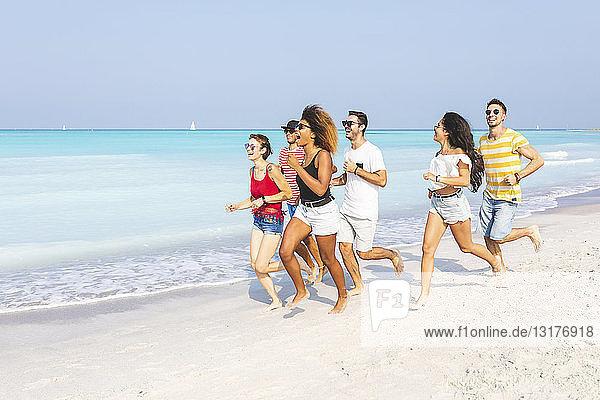 Freunde haben Spaß  laufen am Strand