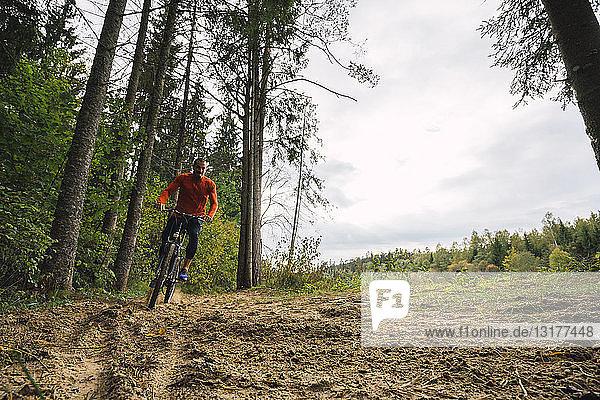 Sportler beim Mountainbiken in den Wäldern