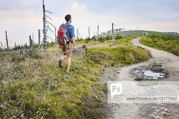 Back view of man hiking in the mountains