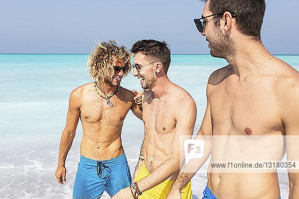 Gruppe von Freunden geht gemeinsam am Strand spazieren