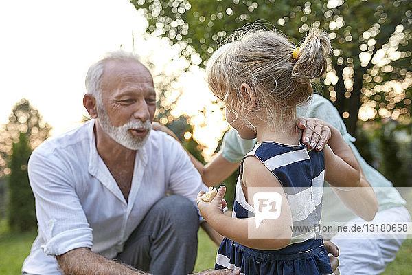 Großeltern mit Enkelin im Garten