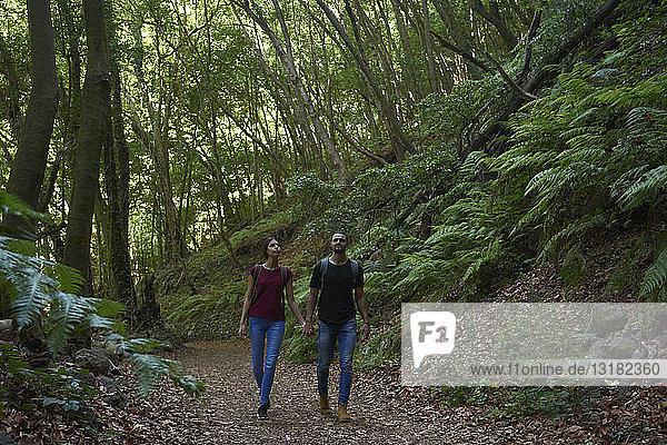 Spanien  Kanarische Inseln  La Palma  Ehepaar geht Hand in Hand durch einen Wald
