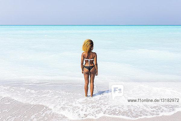 Junge Frau steht am Meer  schaut in die Ferne  Rückansicht
