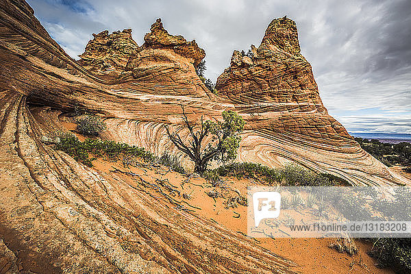 America  Arizona  Kanab  Coyote Buttes
