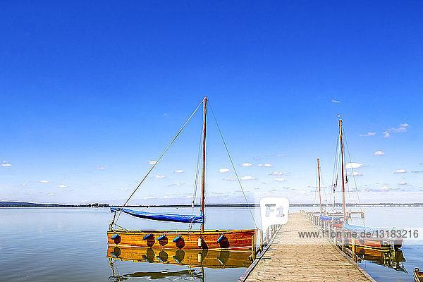 Deutschland  Steinhude  festgemachte Boote am Steinhuder Meer