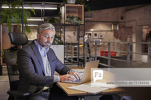 Mature businessman working in modern office  using laptop