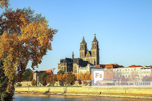 Deutschland  Sachsen-Anhalt  Magdeburg  Dom zu Magdeburg und Elbe