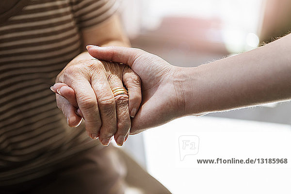 Cropped image of home caregiver holding hand of senior woman