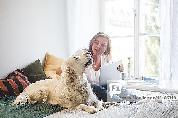 Liebevolle ältere Frau berührt Hund  während sie zu Hause einen Laptop auf dem Bett hält