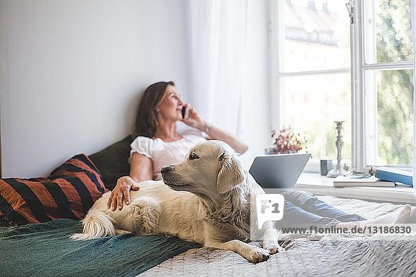Frau berührt Hund  während sie zu Hause am Bett über Handy telefoniert