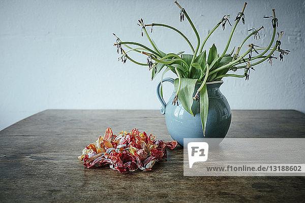 Dead flower petals next to stems in vase