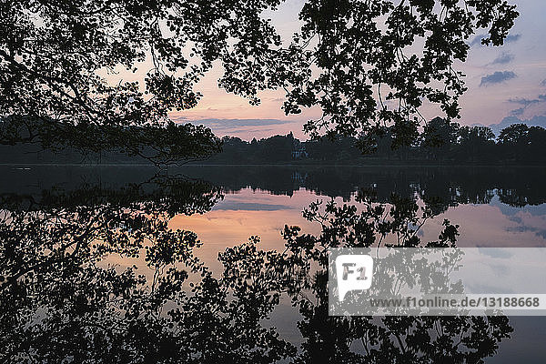 Tranquil silhouette reflection of trees in placid sunset lake  Luetjensee  Germany